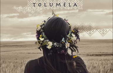 virselis-tolumela_1596538520-b97b9831a76485dbb95776be90d5068c.png